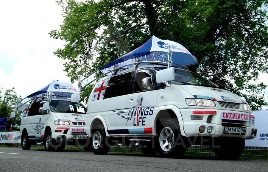 მიცუბიში დელიკა Mitsubishi Delica catcher car
