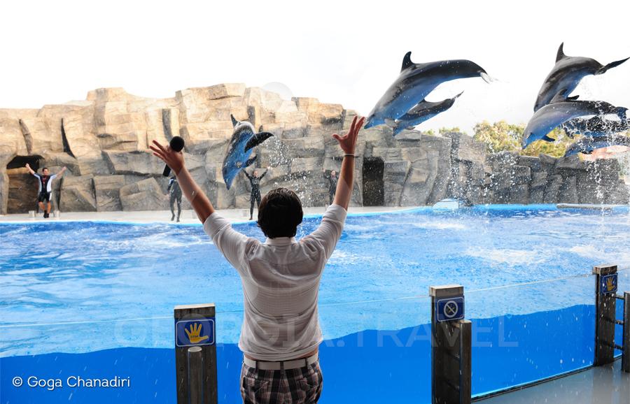 delphinarium Batumi