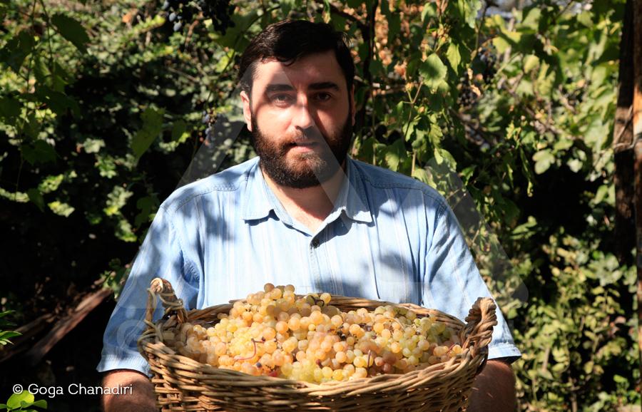 Kakheti Wine Tour Wine Tour in Kakheti